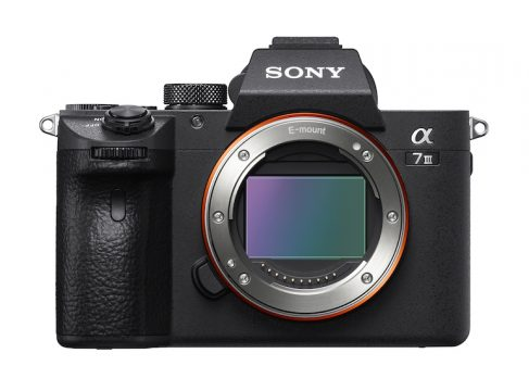 best mirrorless cameras 2019 sony a7iii
